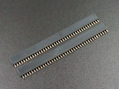 Header Female 1 x 40 Single Row 2-Pack
