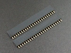 Header Female 1 x 24 Single-Row Gold 2-Pack